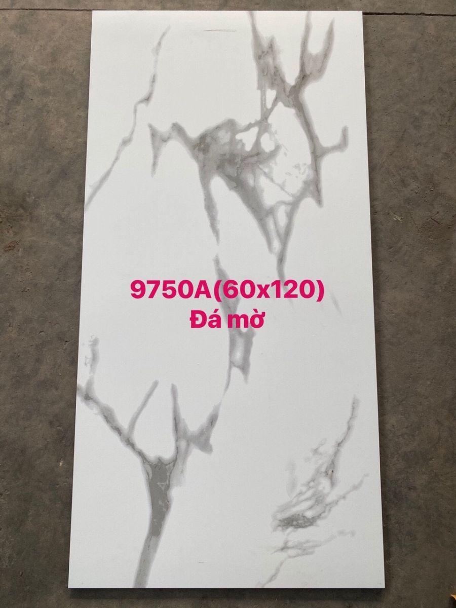 Gạch khổ lớn 60x120 giá rẻ, gạch mờ 60x120 giá rẻ, gạch mờ trắng vân mây giá rẻ